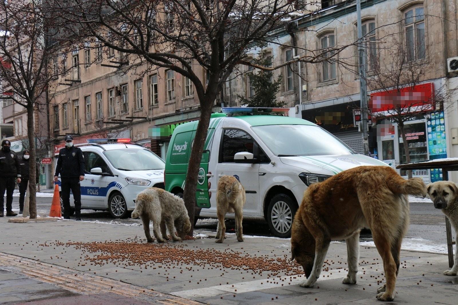 polis-sokak-hayvanlarini-unutmadi-(4).jpg