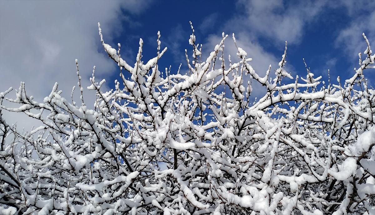sarikamista-kars-yagisi--(3).jpg